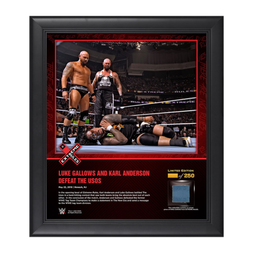 Gallows & Anderson Extreme Rules 2016 15 x 17 Framed Ring Canvas Photo Collage