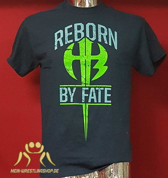 The Hardy Boyz Reborn by Fate Kinder Authentic T-Shirt